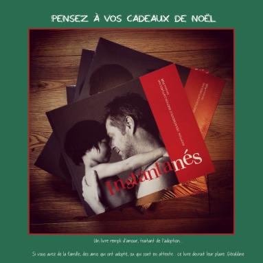 Idée de cadeau pour Noël. Vous avez adopté ou etes en attente, je suis sure que ce livre vous plaira..